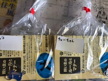 F90530AB-DB51-4262-A3C3-C5769DA26541.jpeg